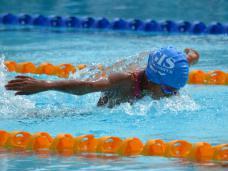 Fly Swimmer 2