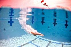Dive into 2015